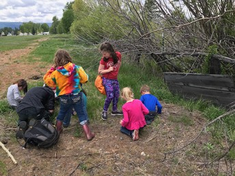 Students working with scientists exploring possible amphibian habitats