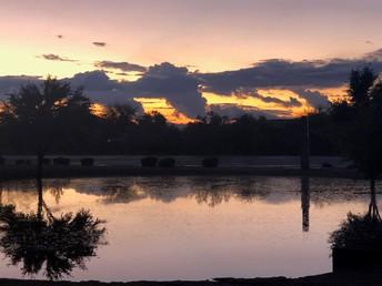 The Payne Pond