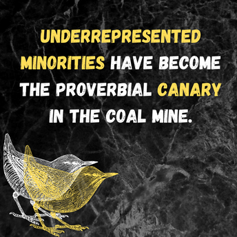"""""""Underrepresented minorities have become the proverbial canary in the coal mine."""" Text on smoky black background with small yellow bird and small white bird."""