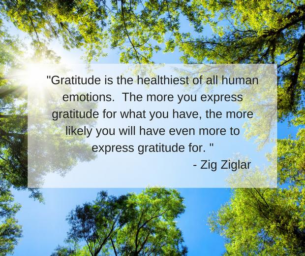Gratitude image