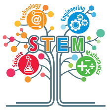 Robotics and STEM Club News