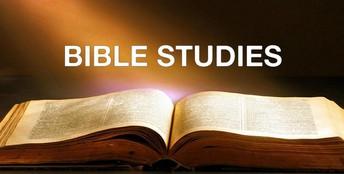 New Sunday School Options
