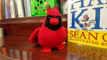 Cardinal Raffle