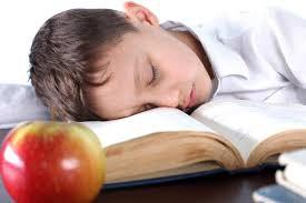 Want better grades? Go to sleep!