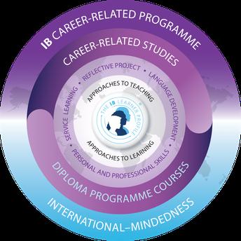 IBC Curriculum