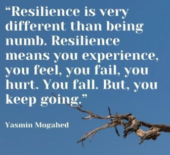 STAR Students Show Resilience - We can bounce back!