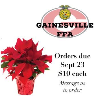 Poinsettia Orders due Monday!