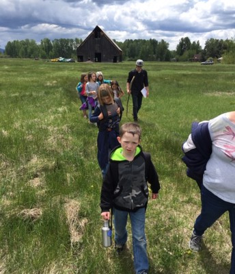 2nd graders on their hike towards aquatic habitats in the meadow