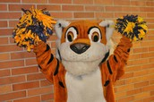 Who Wants to be the Tamanend Tiger!