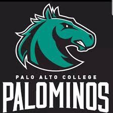 Palo Alto College and St. Philip's College Advising