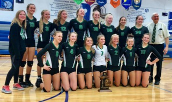 Volleyball Wins Districts!