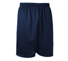 Navy Micromesh Nylon Gym Shorts with Logo