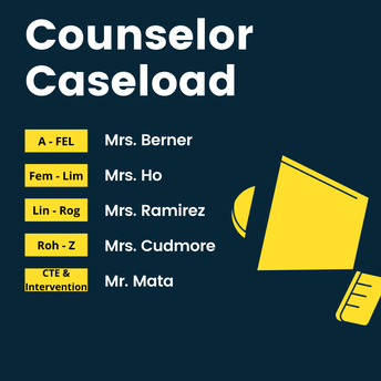 Counselor Caseloads: