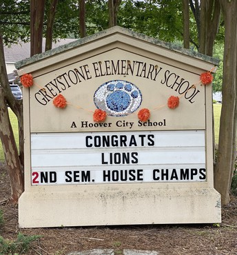 Lions are house champs
