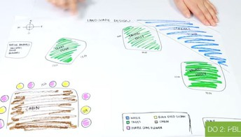 Energy Transfer and Food Webs