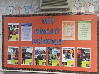 Mrs. Goodchild's Science Board