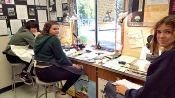 Science Lab - Microscopy