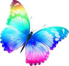 Butterfly sponsors