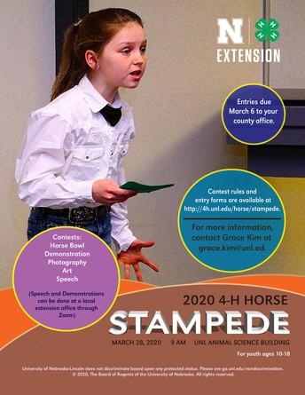 4-H Horse Stampede