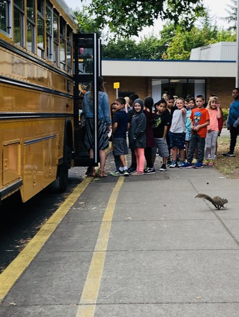 We had a squirrel join our bus evacuation drill.