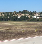 P.E. Fields to Undergo Renovation