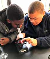 Classroom buddies spend time in the Science Lab!