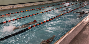 Girls' Swimming Caps Strong Second Season With First Team Victories!