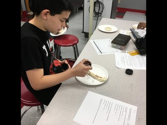Skills for Living Students Test Low-Sodium Alternatives