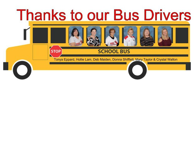 Image Bus Drivers