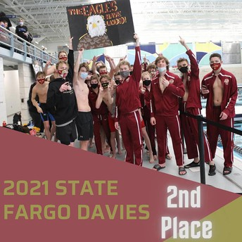 Davies and South Place in State Swim and Dive Meet