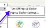Disabling Pop-up Blockers