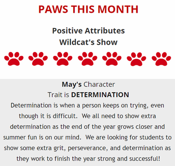 PAWS of the Month: Determination