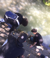 Students release their fish