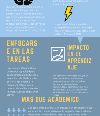 Information about Dual Language and Brain Developement