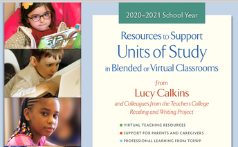 Virtual Resources for Teacher Training