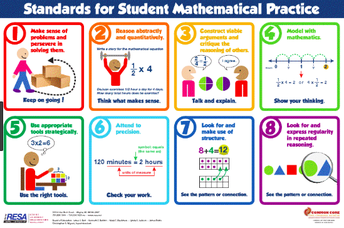 Why Mathematical Practices Matter as Much as the Content