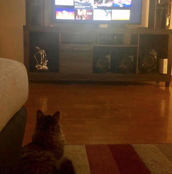 Effe TV kijken ...