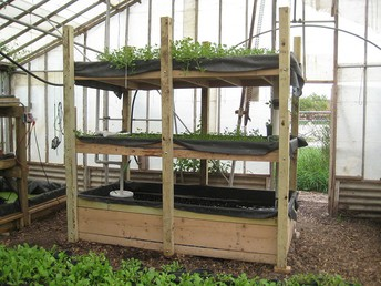 Five Reasons Why You Shouldn't Rely On Aquaponic Herb Garden Anymore