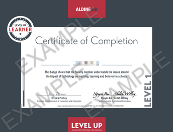 Level Up Learner Certificate