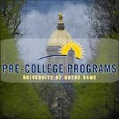 Summer Programs at Notre Dame:
