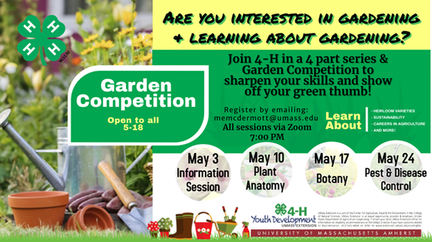 4H Garden Competition image of flyer. Competition for ages 5-18 contact memcdermott@umass.edu for full details