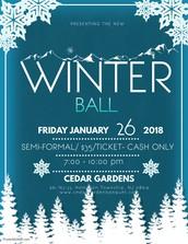 2018 Winter Ball