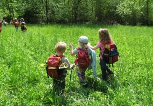 Unique Offerring for Children Going into Kindergarten NEXT Year:  NATURE KINDERGARTEN