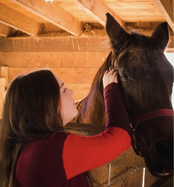 Work Based Learning -  Abigail Adamczyk working with a horse at The Therapeutic Equestrian Center of Holyoke