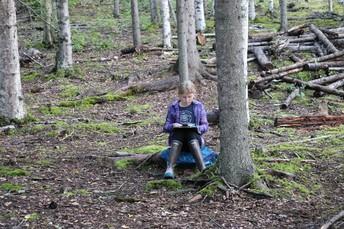 Nature Walk/Study