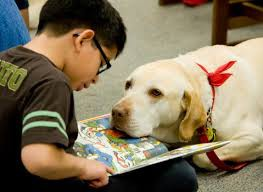 4th Grade - Therapy Dog Visit