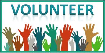 Chaperones & Volunteers