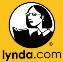 Lynda.com stakeholder Group