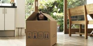 4. Build forts, towers, or rocketships with cardboard pieces and blankets