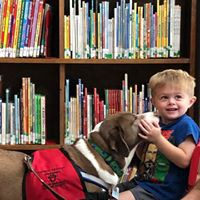 Visit the Springville Public Library